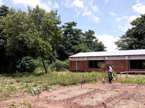 Der Gemüsegarten und im Hintergrund ein ehemaliger Hühnerstall, der als Schlafsaal (wenn Schulungen gemacht werden) umgebaut werden soll ...