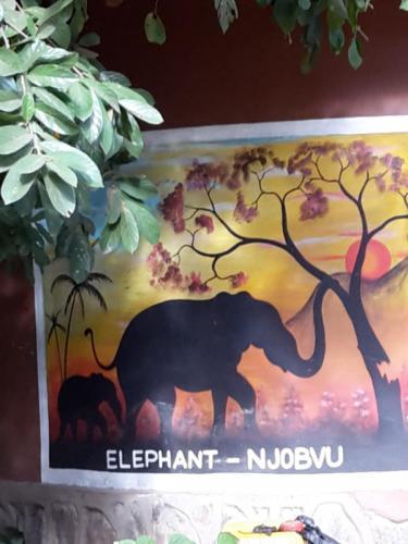 Es ging für ein WE in den Liwonde Nationalpark im Südosten Malawis.